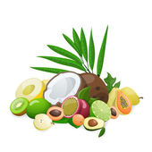 Big group of exotic fruit. Vector illustration — Stock Vector