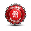 Label - Christmas, winter sale — Stock Vector