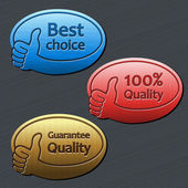 Best choice, guarantee quality, 100 quality labels — Stock Vector
