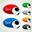 Vector oval sport labels - color sticker with soccer ball — Stock Vector #38396185