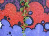 GRAFFITI BACKGROUND — Stock Photo