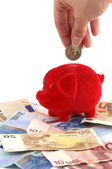 Piggy bank standing on Euro-banknotes — ストック写真