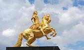 Equestre dorata — Foto Stock