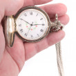 Pocket watch — Stock Photo #12283341
