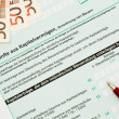 Official German tax form for the tax year 2009 — Stock Photo
