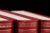 Spine of some antique books — Stock Photo