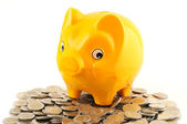 Two Euro coins with piggy bank — Stock Photo