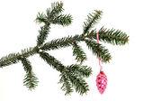 рождественское украшение — Стоковое фото