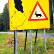 Deer crossing — Stock Photo