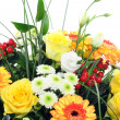 Stock Photo: Flower bunch