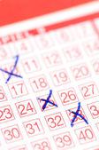 Lotto ticket — Stock Photo