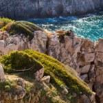 Mediterranean sea and rocky coast of Spain Mallorca island — Stock Photo #32480733