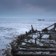 Постер, плакат: Wreck remains
