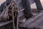 Repet och båt medlem — Stockfoto