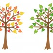 Stock Vector: Two trees with bright leaves, vector