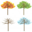 Four trees of different seasons, vector — Stock Vector