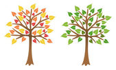 Two trees with bright leaves, vector — Stock Vector
