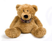 A brown teddy bear, isolated on white — Stock Photo