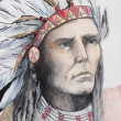 Color drawing of american indian with feathers — Stock Photo