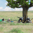 Bicycle tourists resting near tree, field and blue sky — Stok fotoğraf
