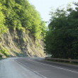 Serpentine road with trees and rocks — Stock Photo