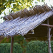 Thatch — Stock Photo