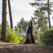 Attractive Model in Black Night Dress alone in Forest — Stock Photo #25077043