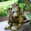Golden lion sculpture in the Park Arboretum Sochi — Stock Photo