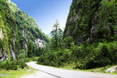 The road passes through the mountains of Abkhazia and leads — Stock Photo
