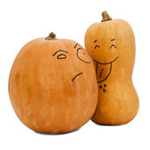 Two different sorts of pumpkin — Stock Photo