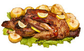 Roast duck with lemon and apples — Stock Photo