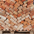 Bricks for next building on wooden pallet — Stock Photo #22450861