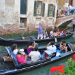 Water life and gondolas of Venice, Italy - Stock Photo