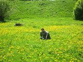 Chłopiec stwarza w dziedzinie mniszek lekarski — Zdjęcie stockowe