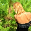 Stock Photo: Sexy girl wears black dress and stays near fir-tree