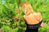 Sexy girl wears black dress and stays near a fir-tree — Stock Photo