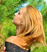 Amazing blonde sexual girl in a black dress poses near a fir-tree — Stock Photo