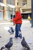 Little cute girl and pigeons — Stock Photo