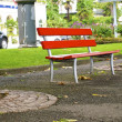 Red bench between the trees — Stock Photo