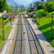 Rail ways in summer — Stock Photo #12665771
