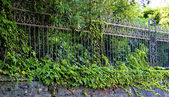 Nice fence in green plants — Stock Photo