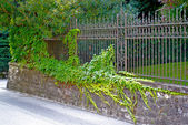 Nice fence in green — Stock Photo