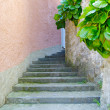 Stock Photo: Stone stair pass in the street of the town on the mountain hill called Gandria, Switzerland