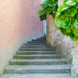 Stone stair pass in the street of the town on the mountain hill called Gandria, Switzerland — Stok fotoğraf