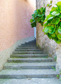 Stone stair pass in the street of the town on the mountain hill called Gandria, Switzerland — Stock Photo
