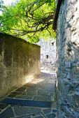 Gandria, i̇sviçre'den bakış — Stok fotoğraf
