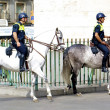 Mounted police — Stock Photo