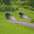 Two tunnels on the road - Stock Photo