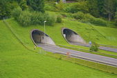 Two tunnels on the road — Stock fotografie