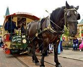Beau cheval porte le tram — Photo